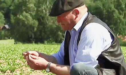 1.000 Jahre Ackerbau auf dem Feld von Wilhelm Brüggemeier